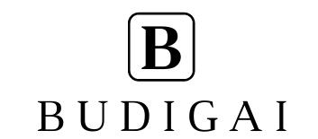 Budigai